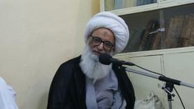 آية الله النجفي يؤكد الاهتمام بزيارة الأربعين الحسيني وإحيائها