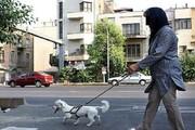 نفوذ خزنده سبک زندگی غربی در جامعه ایرانی