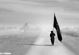 تصاویر برتر مسابقه عکس آستان مقدس حسینی با موضوع اربعین