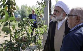 استقلال در تولید محصولات کشاورزی برای عزت و اقتدار کشور بسیار اهمیت دارد