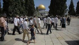یورش 2000 شهرک نشین اسرائیلی  به مسجدالاقصی