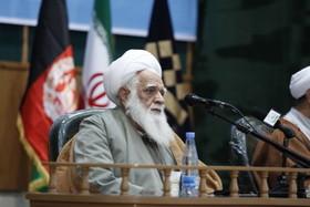 رئیس مرکز فرهنگ اسلامی فرانکفورت درگذشت آیت الله آصف محسنی را تسلیت گفت