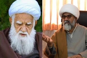 دبیرکل مجلس وحدت مسلمین پاکستان در گذشت آیت الله محسنی را تسلیت گفت