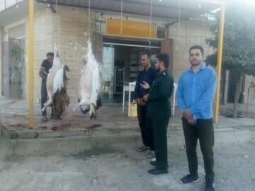 توزیع گوشت قرمز بین اهالی محروم جنوب شیراز