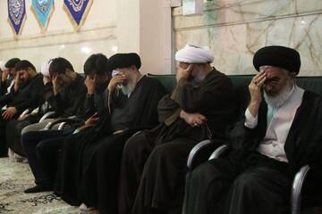 تصاویر/ مراسم بزرگداشت آیت الله آصف محسنی از سوی مجمع جهانی تقریب مذاهب