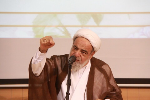 حجت الاسلام نجم الدین طبسی