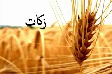 ۷۳ میلیارد ریال زکات در بوشهر جذب شد