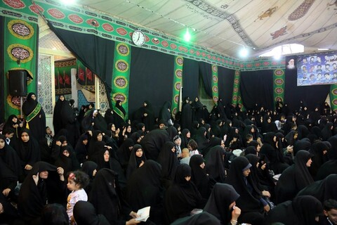 تصاویر/ همایش رهروان زینبی در امامزاده موسی مبرقع(ع)