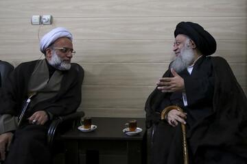 نماینده ولیفقیه در هندوستان با آیتالله موسوی جزایری دیدار کرد