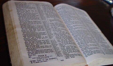 استاد دانشگاه: عدم تنوع مترجمان انجیل بر معنای آن تاثیر گذاشته!