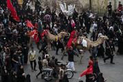 تصاویر/ کاروان پیاده روی ۴۰ هزار نفری «مشایه» اهواز