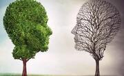 برگزاری پانزدهمین مسابقه مجازی «سلامت روان»