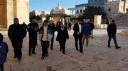 Over 750 Israeli settlers violate Aqsa Mosque protected by Israeli forces