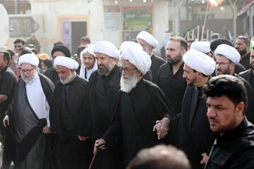 آية الله بشير النجفي يشارك بمسيرة الأربعين ويؤكد أهمية وعظمة الزيارة + الصور