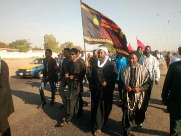 آغاز راهپیمایی اربعین در برخی از شهرهای نیجریه