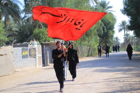 تصاویر/ راهپیمایی زائران اربعین در مسیر نجف به کربلا