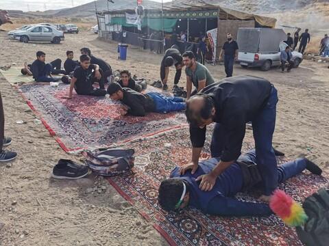 تصاویر/ پیاده روی زائران حرم امام رضا(ع)