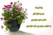 پیام مجمع نمایندگان طلاب مازندران به امام جمعه جدید ساری