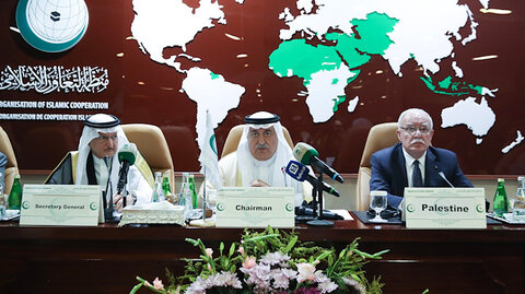 Organization of Islamic Cooperation mandate needs to be reviewed: Expert