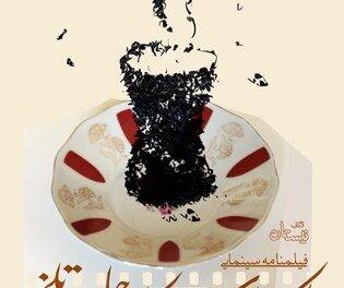 «یک استکان چای تلخ» اثر سید علی شجاعی منتشر شد