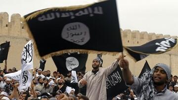 جریان های تکفیری و سلفی بلای جان جهان اسلام اند