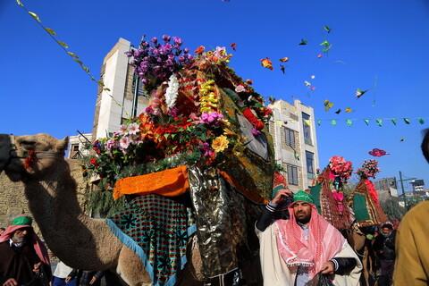 تصاویر / مراسم استقبال از کاروان نمادین حضرت فاطمه معصومه(س) به قم