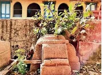 مسجد 400 ساله در گجرات هندوستان از زیر خس و خاشاک سر درآورد