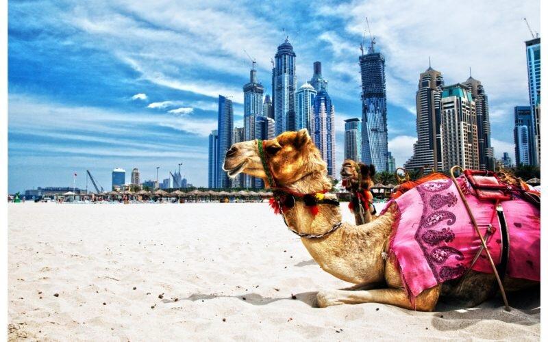 نگاهی به اقتصاد رو به افول امارات در پرس تی وی