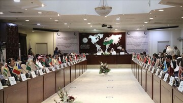 OIC concerned over issues affecting Muslims in India