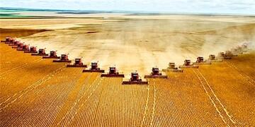 ترامپ کشاورزی آمریکا را فلج کرد