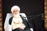 فیلم/ نظر آیت الله العظمی نوری همدانی درباره طب اسلامی