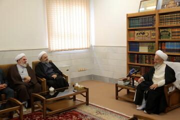 تصاویر/ دیدار دبیرکل مجمع  جهانی تقریب مذاهب اسلامی با مراجع و علما