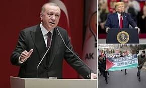Turkey won't back any peace plan not accepted by Palestinians: Erdogan