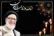 تجلیل شخصیت های حوزوی و سیاسی از مجاهدت های تبلیغی واعظ یزدی