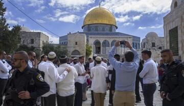 جانشین مفتی استانبول: یاری مسئله فلسطین امری واجب است