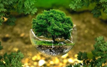 Environmental health from the Qur'an's perspective