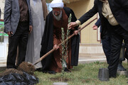 حدیث روز   پاداش شیرین درختکاری