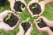 آغاز پویش ملی «درخت دوستی بنشانیم» در قم