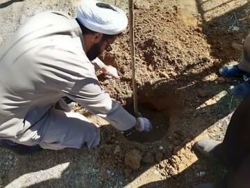 تصاویر/ کاشت درخت توسط مدیر مدرسه علمیه بیجار
