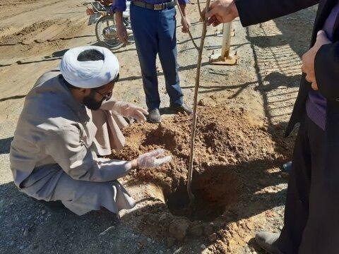تصاویر/ کاشت درخت توسط مدیر مدرسه علمیه بیجار و امام جمعه توپ آغاج به مناسبت هفته منابع طبیعی