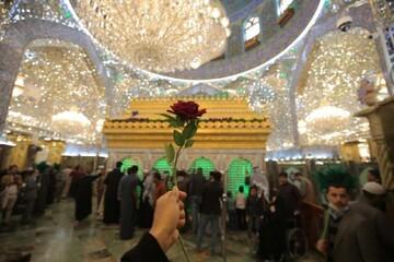 حال و هوای حرم امیرالمؤمنین (ع) در سالروز ولادت آن حضرت +تصاویر