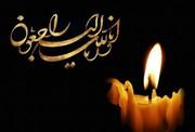 رئیس پژوهشگاه علوم و فرهنگ اسلامی ارتحال آیت الله امینی را تسلیت گفت