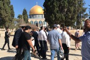 ممانعت اشغالگران از توزیع بروشور مقابله با کرونا در مسجدالاقصی