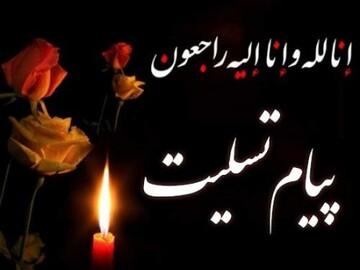 خانم داوودی مصداق زن تراز انقلاب اسلامی بود