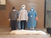 بالصور/ تجهيز موتى الكورونا على يد طلاب العلوم الدينية المتطوعين في محافظة هرمزكان جنوبي إيران
