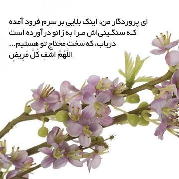 عکس نوشته | فرازهایی از دعای هفتم صحیفه سجادیه
