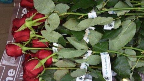 اهدای گل