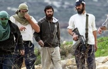 Rights Group: Israeli settlers attacks against Palestinians rise 'Noticeably'
