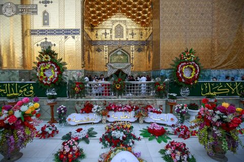 الصحن العلوي المطهر يزدان بأكثر من ستة آلاف زهرة بمناسبة ولادة الإمام الحسن المجتبى (ع)