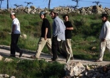 Israeli colonists hurl stone at Teqoua' town council